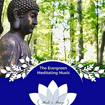 The Evergreen Meditating Music