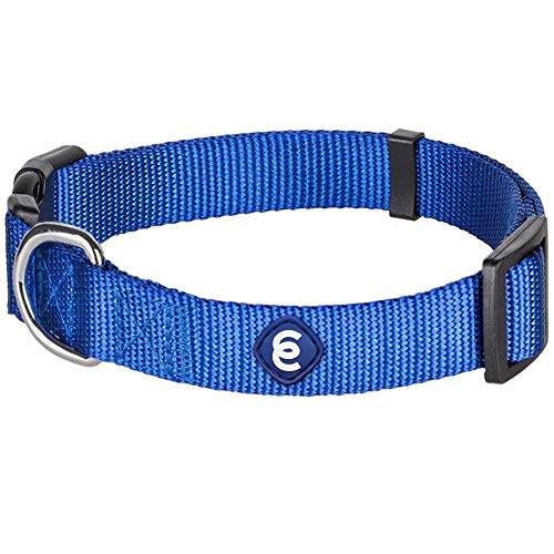 Blueberry Pet Essentials 22 Colors Classic Dog Collar, Royal Blue, Large, Neck 18'-26', Nylon Collars for Dogs