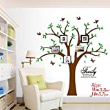 Family Tree Wall Decal with Butterflies and Birds, Simple Style Wall Decal, Living Room Home Decor Wall Sticker (Green+Brown)