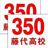 ゼッケン 陸上競技用プリント入り2枚セット サイズ24cm×20cm 2段組チーム名入り 丸ゴシック体 赤