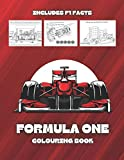 Formula One Colouring Book: Motorsport Coloring Pages for Kids and Adults Featuring Racing Cars + Facts About F1 Races