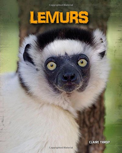 Lemurs: Living In The Wild Book