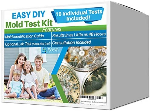 Evviva Sciences Mold Test Kit for Home 10 Simple Mold Detection Tests Optional Lab Analysis product image