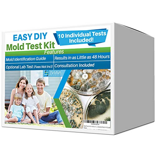Evviva Sciences Mold Test Kit for Home - 10 Simple Mold Detection Tests - Optional Lab Analysis - Test HVAC System, Room Air, & Home Surfaces for Molds/Spores - Includes Detailed Mold ID Guide