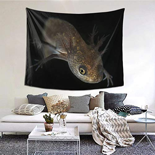 Perfect household goods Triton Nature Fon Tapisserie murale décorative pour chambre à coucher, salon, dortoir 152,4 x 130,2 cm