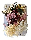 Zoom IMG-1 caliyo fiori secchi per resina