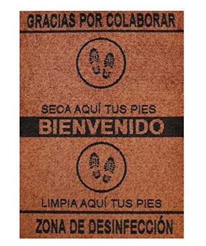 Alfombra desinfectante Calzado - Felpudo Limpia Zapatos para la Entrada, moqueta higienizante, Color marrón