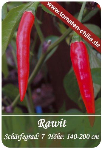 Chili Samen - 15 Stück - Rawit