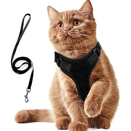 AEITPET Arnes Gato, Arnes para Gatos, Correa arnés arnes Gato pequeño Cuerda Chaleco Ajustable Respirante Arnés para Gatos y Correa Chaleco Suave y Transpirable para Mascotas pequeñas (XS, Negro)