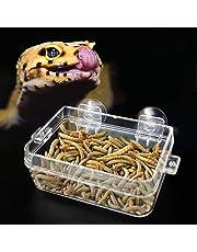 Pssopp Alimentador de Reptiles Plato Anfibios Alimento Tazón de Agua Cuenca de alimentación de lombriz Anti-Escape con Ventosa para Tortuga Gecko Serpientes Lagarto Araña