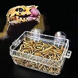 Pssopp Mangiatoia per rettili, Anfibi Ciotola per Acqua per Alimenti Bacino di Alimentazione per Vermi Anti-Fuga con Ventosa per Geco Tartaruga Serpenti Lucertola