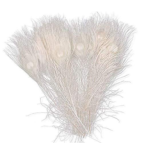 TTBD 50 Pezzi/Piume di Pavone Bianche Naturali negli Occhi, da 10 A 12 Pollici della Decorazione di Nozze di Piume di Pavone