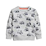 HUAER & Baby Boy Round Neck Cotton Long Sleeve Pullover Sweatshirt (3-4T, Gray)
