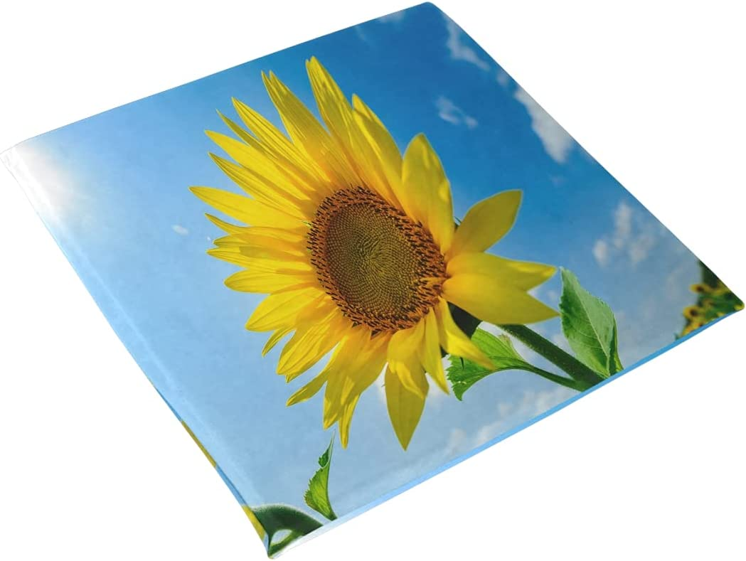 The Limited Easy-to-use price sale Sunflower On Field Under Office 15.7in Square Summer Cushion