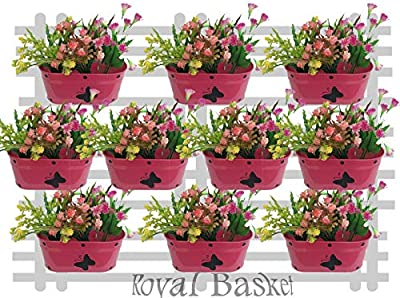Royal Basket Butterfly Dotted Oval Railing Planters (Pink, Pack of 5)
