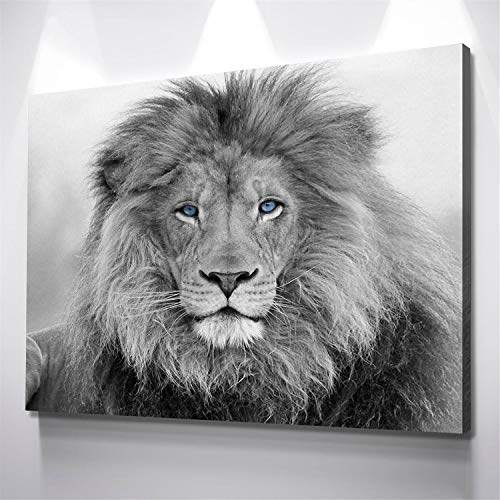 DOLUDO Black and White Blue Eyed Lion Canvas Wall Art Painting Prints Poster Picture for Living Room Bedroom Home Decor Christmas Artwork No Frame 12x20inch
