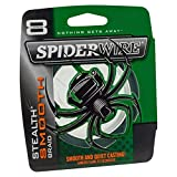 Spiderwire Smooth 8 Tresse Mixte, Vert Mousse, 300 m/0.20 mm