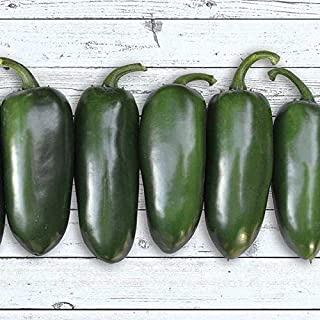 Emerald Fire F1 Hybrid Hot Pepper Seeds -These are extra large Jalapeno peppers(10 - Seeds)