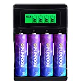 Deleepow Rechargeable AA Lithium Batteries 3200mWh, 1500 Cycles 1.5V Constant Output Rechargeable Double A Li-ion Batteries 4 Count,with USB LCD Display AA AAA 2 H Fast Charger