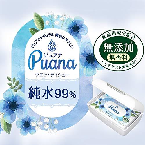 大王製紙 エリエール ピュアナ Puana 純水99% ウェットティシュー 本体 62枚 [8506]
