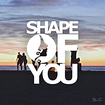Fingerstyle Shape of You