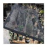 GGYMEI Malla Sombra De Red, Protector Solar Cifrado Engrosado Orquídea Suculenta Balcón Patio Uso Doméstico Invernadero Hidratante, Tamaño Personalizable (Color : Black, Size : 2x6m)