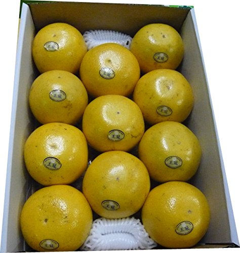 グレープフルーツ完熟 ホワイト11個入り 東洋フルーツ(有)