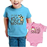 Nursery Decals and More, Promoted to Big Sister Shirt, Family Outfits Matching Sets, Monkey Big Brother/Owl Little Sister, Big Sibling 3T / Lil Sibling NB (0-3M)