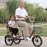 ZJZ Bicis de la Rueda del Triciclo 3 de 24 Pulgadas para la recreación del Ejercicio de Las Compras