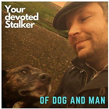 Your Devoted Stalker