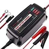 LotFancy Batterieladegerät 12V 5A Autobatterie für Auto, Motorrad, Rasenmäher, Marine, Boot, ATV, Wohnmobil, UTV, Aufsitzspielzeug, SLA Gel VRLA Wet AGM Versiegeltes Erhaltungsladegerät