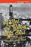 A Net of Good and Evil: A Damon Taylor Novel (Stark House Press)