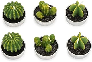 NXYCXXJS Cactus Tealight Candle Handmade Long Burning Delicate Succulents Tea Light Candle Holder Party Wedding Spa Home D...