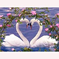 キットによる絵画 塗り絵 手塗 子供 DIY絵 デジタル油絵 白鳥-40x50cm (diyの木製フレーム)