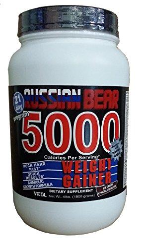 russian bear weight gainer - 1