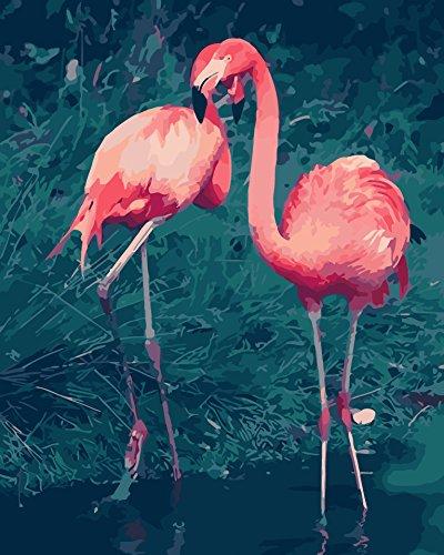 Fuumuui DIY preimpreso Lienzo Regalo de Pintura al óleo para Adultos niños Pintura por número Kits con Marco de Madera para la decoración casera -Pájaros Rojos 16 * 20 Pulgadas