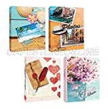 Zep Bundle 4 Album da 300 Foto Cad. - 1200 Foto 13x19 13x18 13x17 - Portafoto a Tasche con Memo in Varie Fantasie