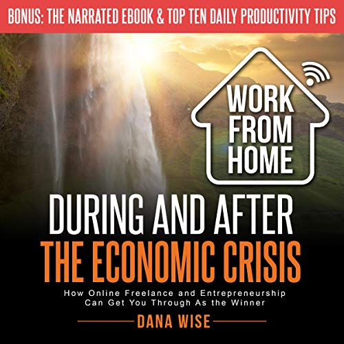 Work from Home During and After the Economic Crisis  By  cover art