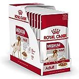 ROYAL CANIN Comida húmeda Adult Medium Trozos de Carne en Salsa para Perros Adultos de Razas Medianas - Caja 10 x 140 gr (Bolsitas)