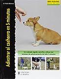 Adiestrar al cachorro en 5 minutos (Excellence)
