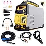 Tig Welder, 200 Amp HF Portable (110V/220V) Tig&Arc Inverter Welding Machine For Stainless Steel, Alloy Steel, Carbon Steel, Copper, Copper Alloy and Other Non-Ferrous Metal Welding Use Gas