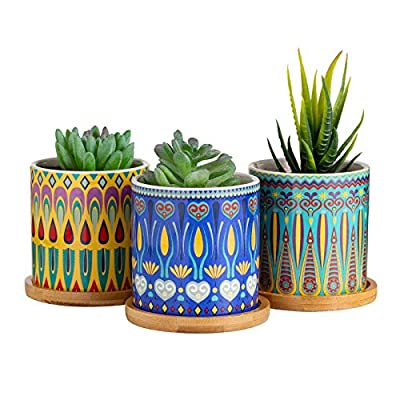 Dsben 3.2 Inch Succulent Plant Pots, Small Modern Pattern Flower Ceramic Planter Indoor with Bamboo Tray for Cactus, Herbs, Home, Set of 3