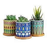 Dsben 3.2 Inch Succulent Plant Pots, Small Mandala Style Flower...