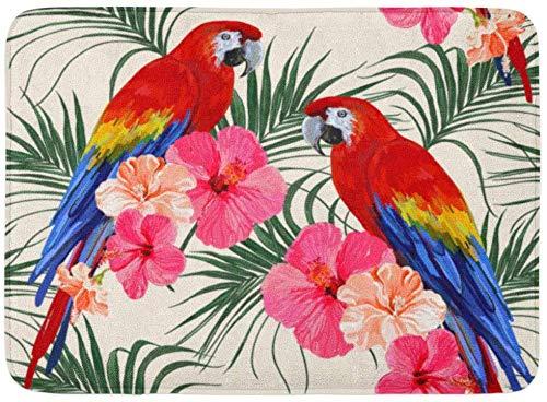 """ECNM56B Felpudos Alfombras de baño Alfombrilla para la Puerta Flores de Colores Hermoso diseño Floral de Verano Hojas de Palmera Tropical Loro Ara Hibisco Verde Hawai 15.8""""x23.6"""