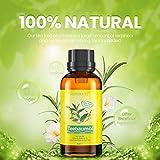 Zoom IMG-2 tea tree oil 60ml olio