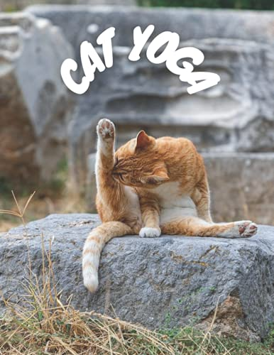Cat Yoga: A Cat Themed Blank Lined Notebook