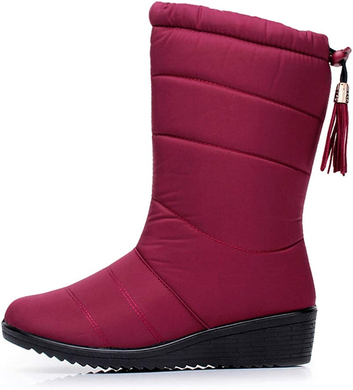 Women's Snow Boots Slip On Waterproof Tassle Wedge Winter Plush Warm Anti-Slip Round Toe Female Mid Calf Boots