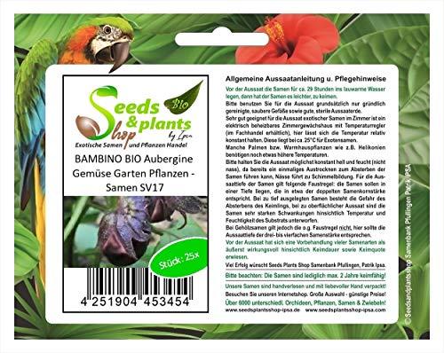 Stk - 25x BAMBINO BIO Aubergine Gemüse Garten Pflanzen - Samen SV17 - Seeds Plants Shop Samenbank Pfullingen Patrik Ipsa