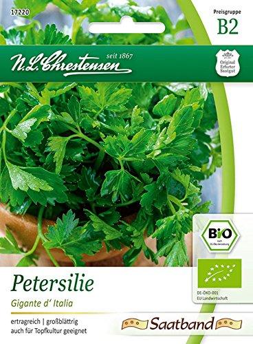 Bio Petersilie glatt \'Gigante d\' Italia\' Saatband Saatgut Samen (ertragreich, großblättrig)
