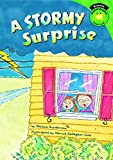 A Stormy Surprise (Read-it! Readers: Science) (English Edition)